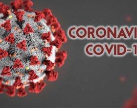 LINEA COVID-19 CORONAVIRUS